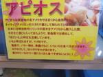 帰路運動場 奥入瀬 012.JPG