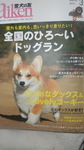 愛犬の友 001.JPG